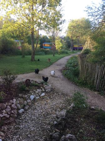 Family Ecolodge : Vue chambre