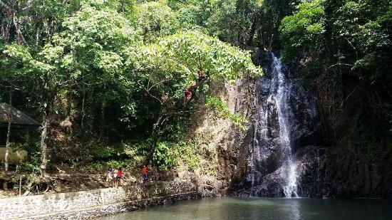 Tak Tak Falls: Me climbing the tree @ the waterfall