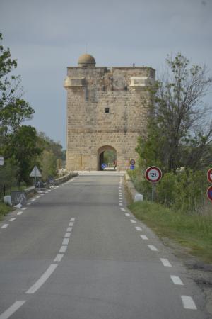 Tour Carbonniere