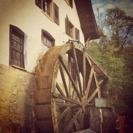 Hotel Bibermuehle: The old water wheel