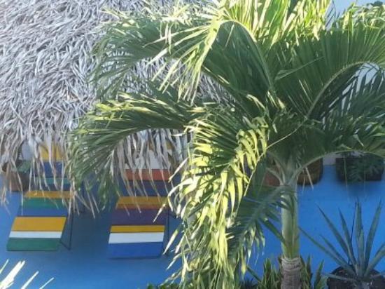 Casa Buena Onda - Sayulita Surf Hotel : view from our floor
