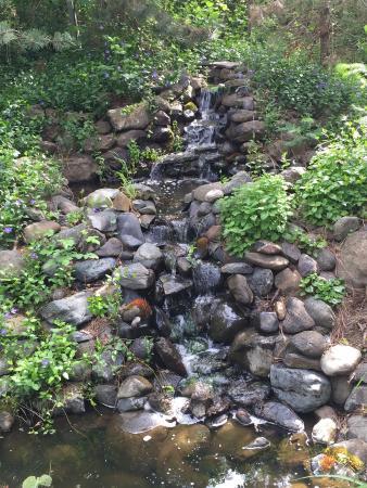 Weasku Inn: Little creek