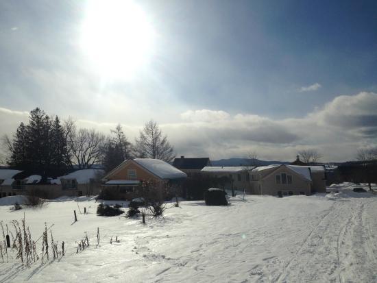 Lyndonville, VT: Snowy Walk