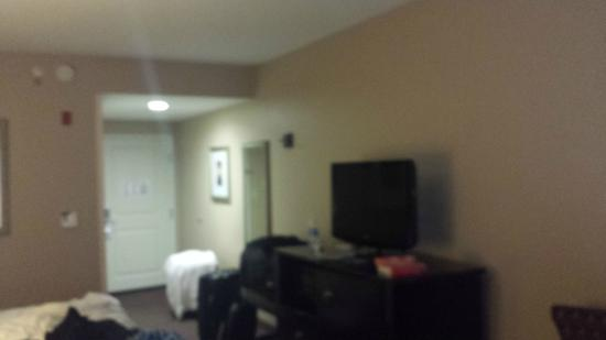 Holiday Inn Express Hotel & Suites Mt Pleasant-Charleston: The room