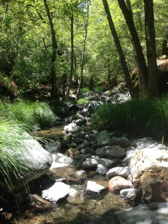 Middletown, Kalifornia: Hiking nearby