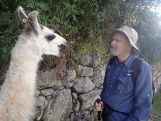 Peru Adventures Paradise Private Day Tours : You make new friends on the Inca Trail