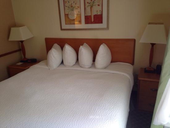 Fairfield Inn & Suites Tampa Brandon: The king bed & nightstands in a king-bed suite.