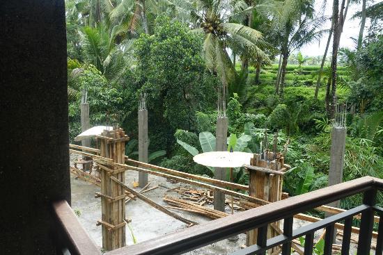 Mulawarman Ubud Bali: The view from the balcony