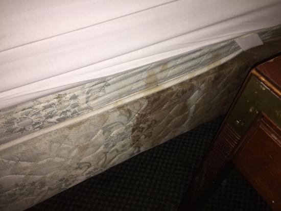 Super 8 Hermitage Nashville: Nasty mattresses