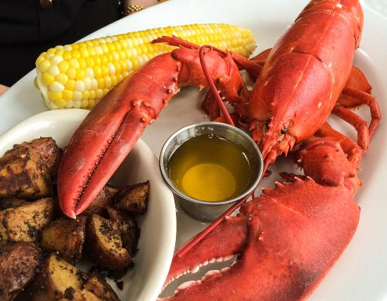 Muddy Rudder Restaurant: Steamed Maine Lobster