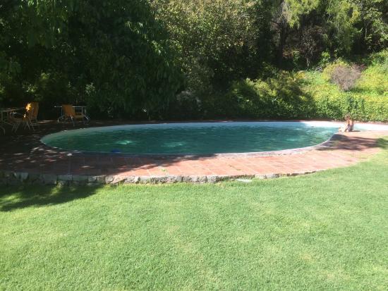Lodge Andino El Ingenio : La piscine