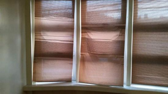 "Pinehurst Suites: Quote from the hotel website: ""Stylish window blinds"""