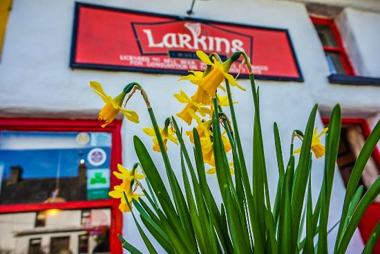 Larkin's Bar and Restaurant