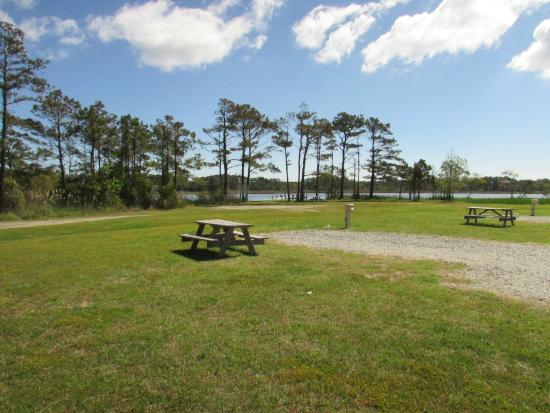 OBX Campground: Grounds