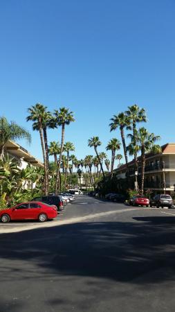 Days Inn San Diego Hotel Circle Near SeaWorld: Motel