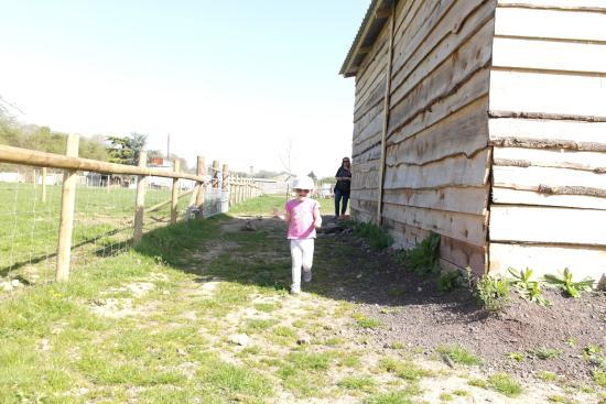 写真River Bourne Community Farm枚