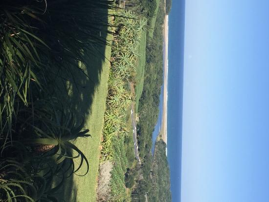 Casa Toscana: Fine food with a fabulous view