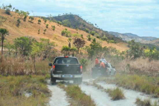Uiramuta, RR: Estrada