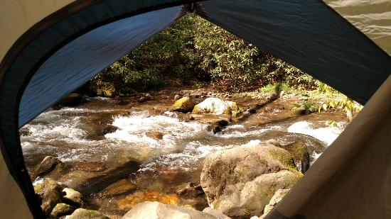 Indian Creek Campground : The view through our back door.