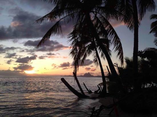 樂塔哈島度假加Spa酒店張圖片