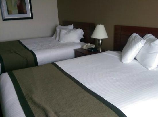 Baymont Inn & Suites Dubuque: The beds, after we were sitting on them.