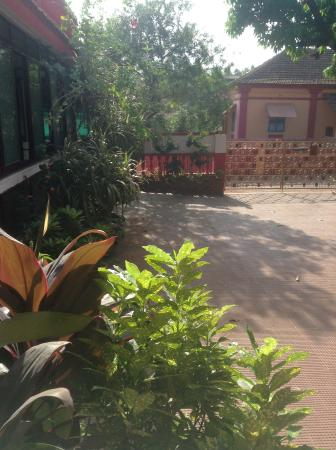 Arjun Villa: In the yard.View from our room