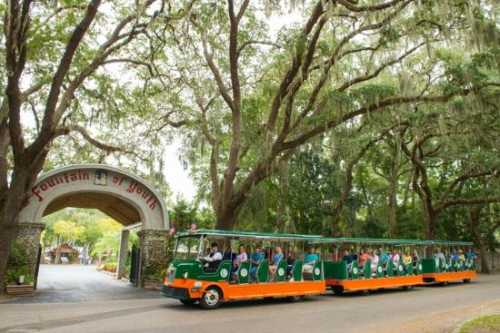 Image result for st. augustine trolley tour