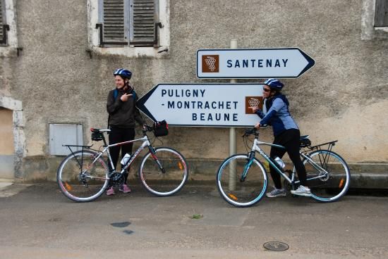 Bourgogne Evasion : Ah, which way to go!
