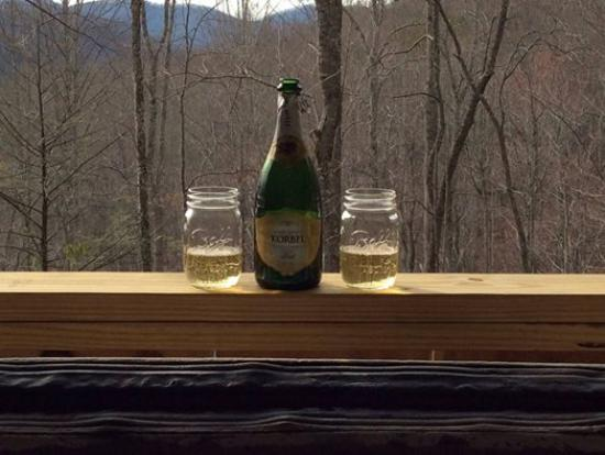 Cabins of Asheville : Our view from the hot tub