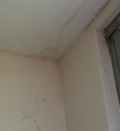 Punta Chame Club & Resort: Cob web and dust cover screen in bathroom