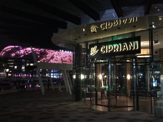 Cipriani yas island abu dhabi restaurant reviews phone for Ristorante cipriani abu dhabi