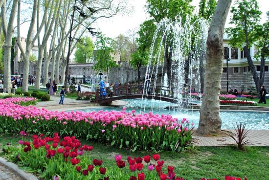 Pink Apart House: Парк Гульханэ
