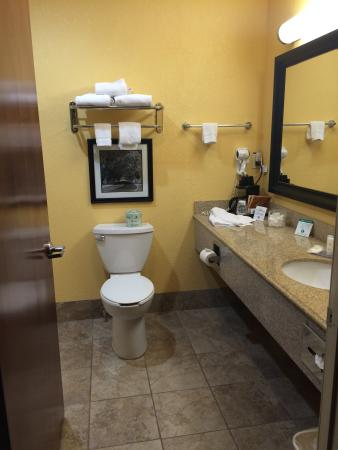 Comfort Inn: Very spacious bathroom with all the amenities. Especially loved the q-tips and cotton swabs in t