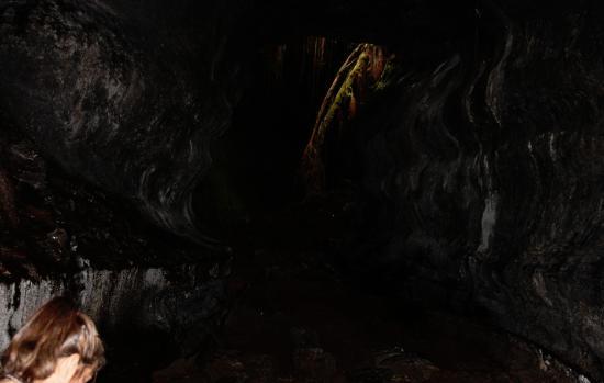Volcano Fern Forest Retreat : Active Lava Hawaiian Tours