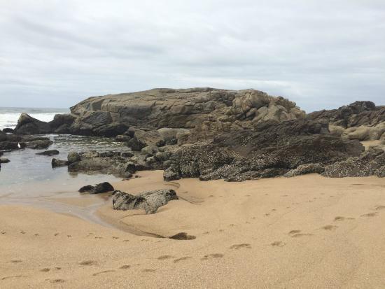 Beachcomber Bay: Their Private beach