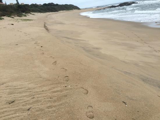 Beachcomber Bay: More beach