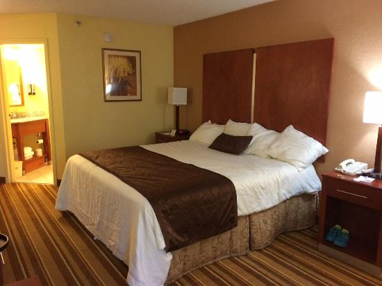 Best Western Plus Richmond Airport Hotel: King size bed