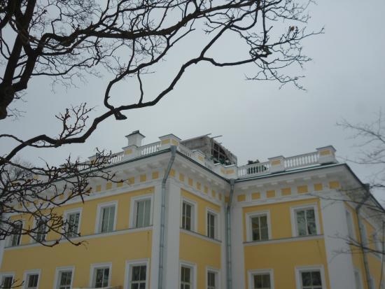 Kamennoostrovsky Palace