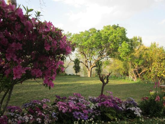 Dhulikhel Mountain Resort: Garden