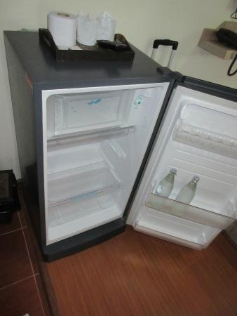 Home Place Guest House: Big fridge