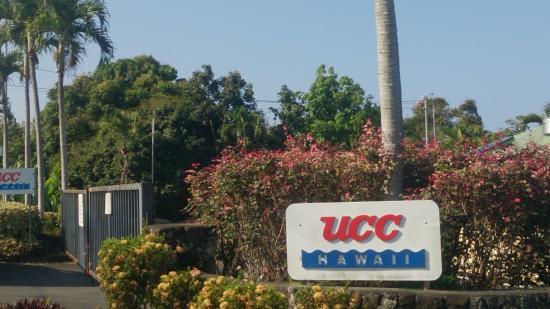 UCC Hawaii Kona Coffee Estate : 焙煎体験しました