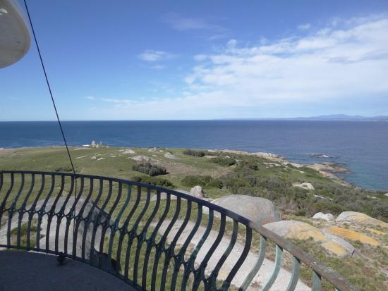 Montague Island: View from top of lighthouse