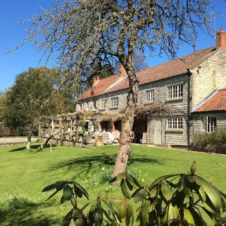The Pheasant Hotel: The Pheasant in Spring Sunshine