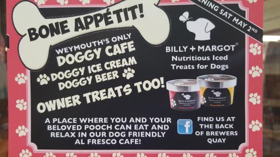 Weymouth, UK: Dog Friendly Cafe