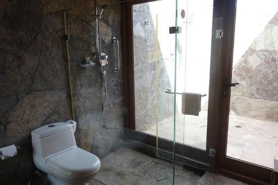 Indoor Outdoor Shower bathroom - indoor shower looking out to outdoor shower - picture