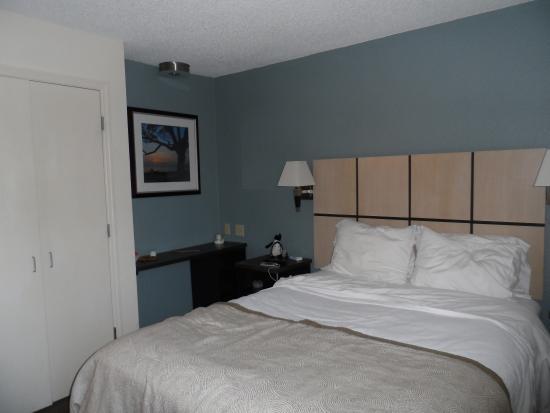 Candlewood Suites Clearwater: Bedroom