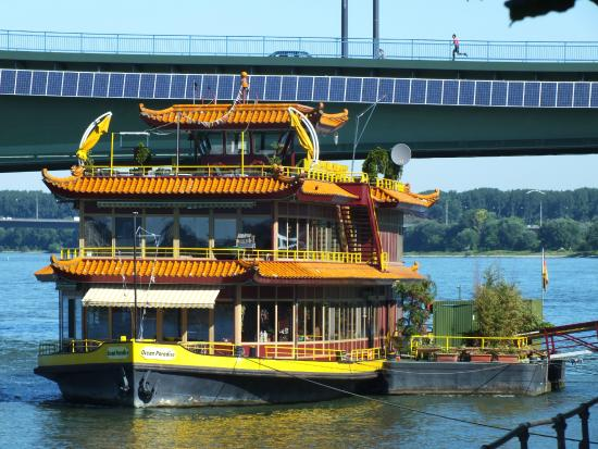 Ocean Paradise Bonn Beuel Mitte Restaurant Bewertungen