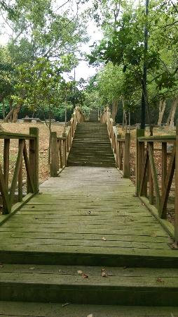 Xiao Jing Ring Road Trail