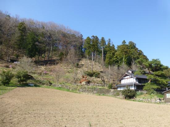 Yasuragi Peace House