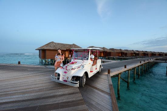 Hideaway Beach Resort Spa Special Buggy Is Prepared For Some Honeymooners